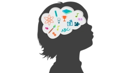 neuroceducacion